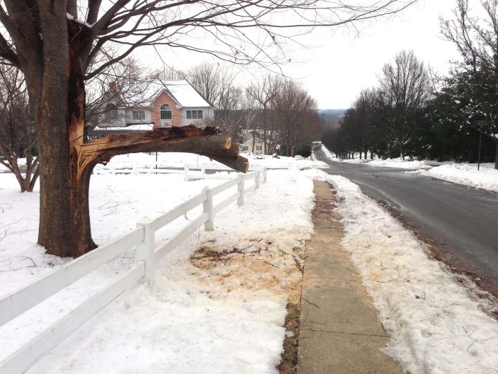 Once A Decade Ice Storm Brings 22 Calls For Service